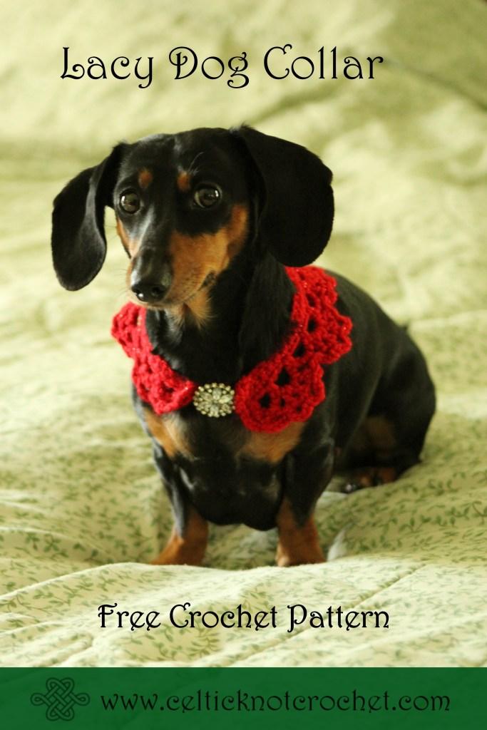 Dog Free Crochet Patterns – Krazy Kabbage | 1024x683