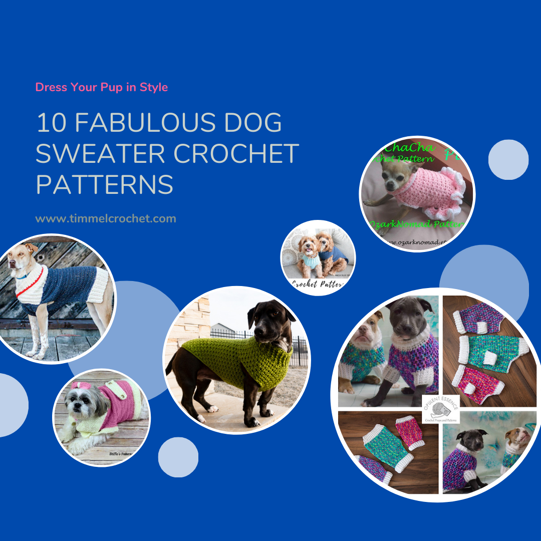 Graphic with dark blue background and pictures of dogs in sweaters.in