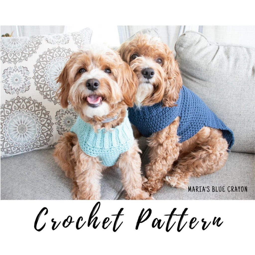 Two cute cockapoo dogs sitting on a couch wearing blue sweaters.