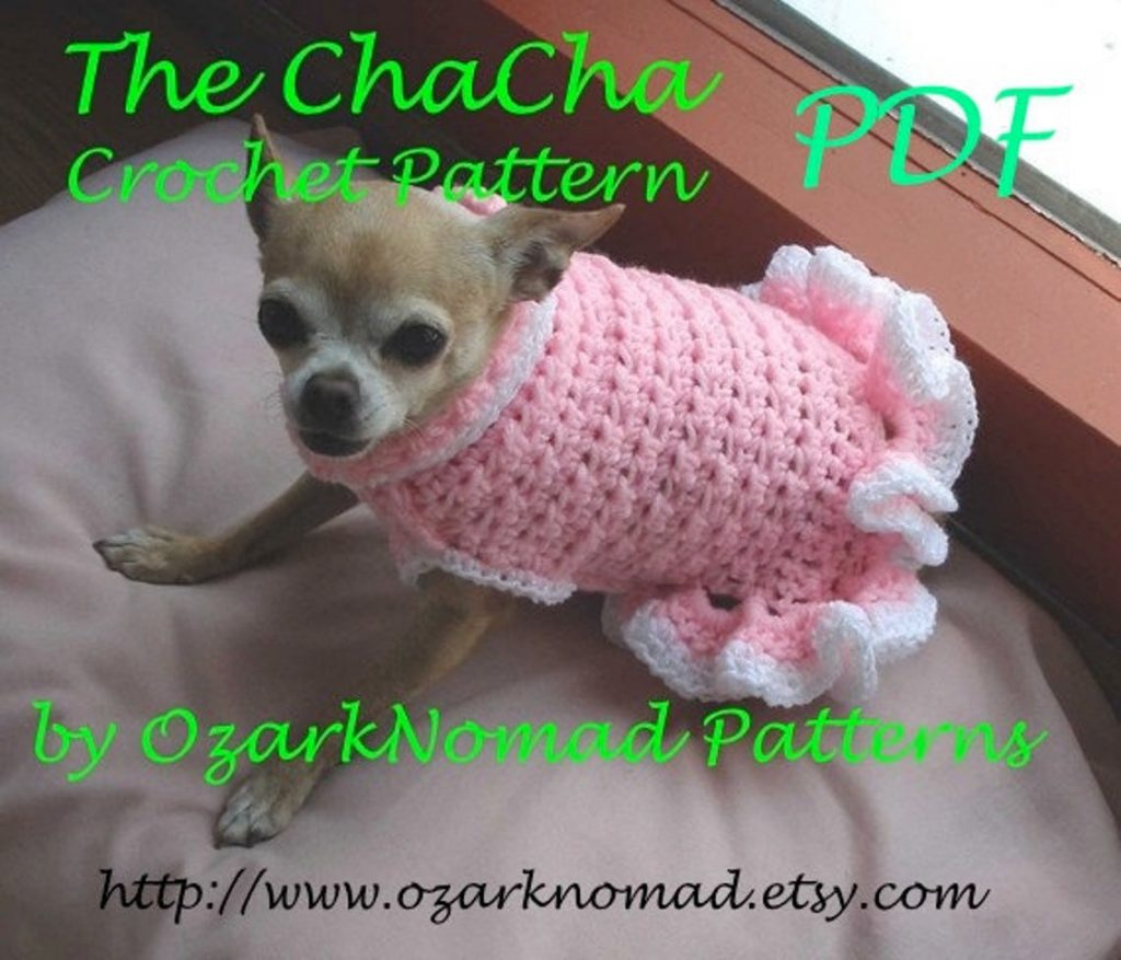 A chihuahua in a crocheted pink frilly sweater dress.