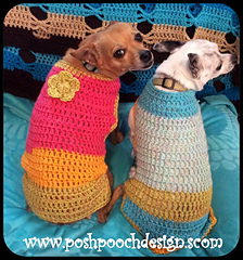 Two chihuahuas in colorful sweaters. One sweater is pink and yellow with a flower on the back. One is blue and yellow with no flower.
