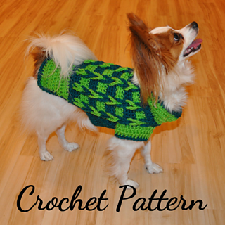 A Papillion dog wearing a green sweater with an arrow type design.