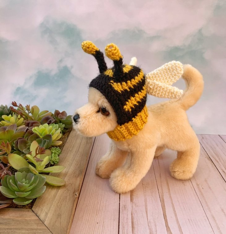 A stuffed dog wearing a bee hat standing next to a square container of succulents.